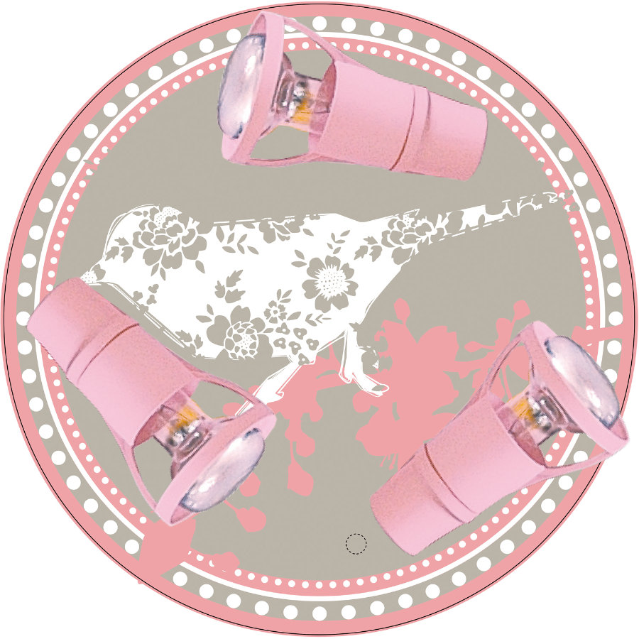 WALDI Taklampa rosa