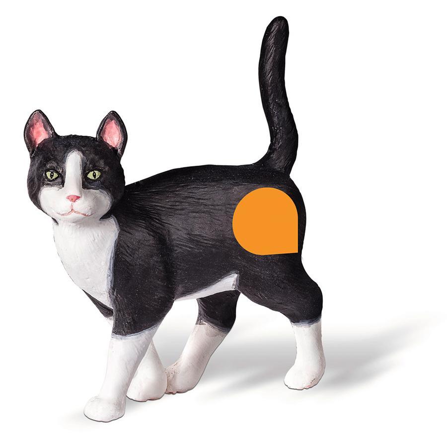 RAVENSBURGER tiptoi Spielfigur Katze
