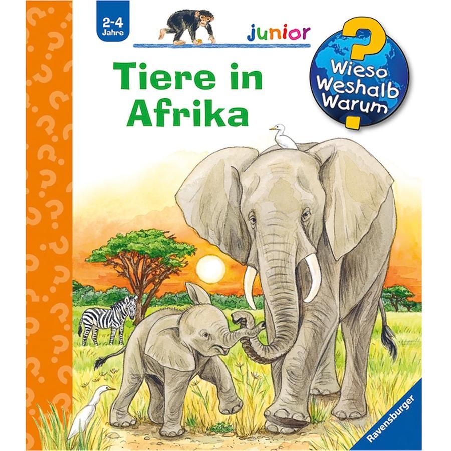 RAVENSBURGER Wieso? Weshalb? Warum? Junior, Band 50: Tiere in Afrika