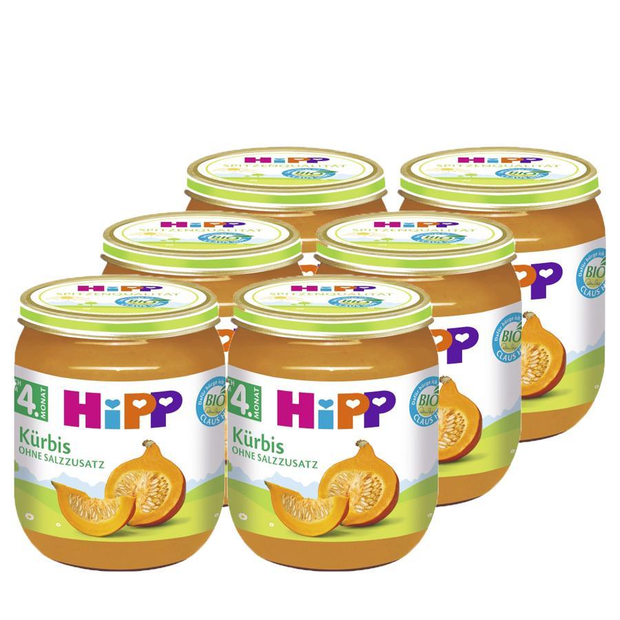 HiPP Kürbis 6 x 125 g