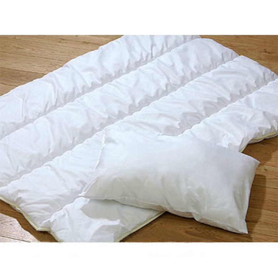 ALVI Quilt Comforter and Pillow Set