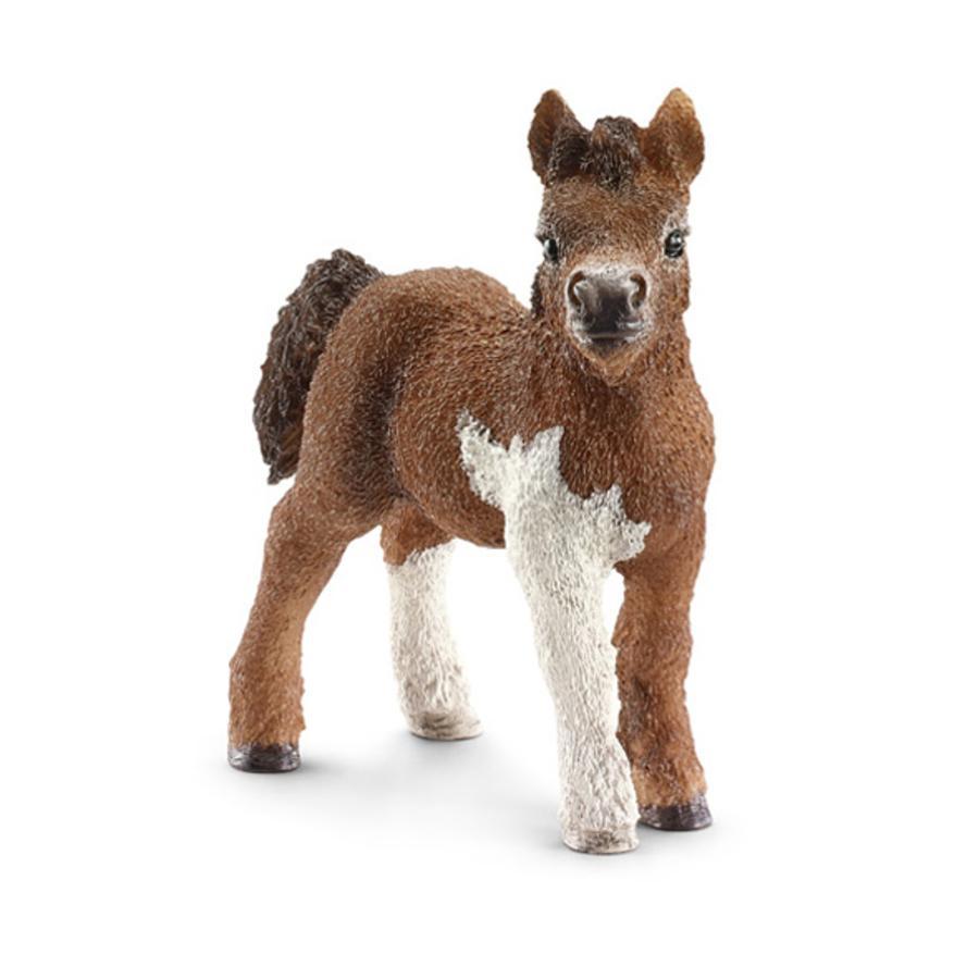 SCHLEICH Shetland Pony Fohlen 13752
