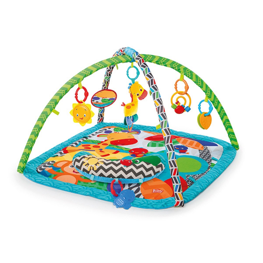 HCM Bright Starts  - Zippy Zoo Babygym
