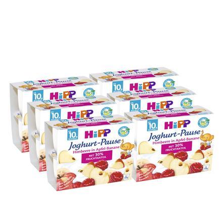 HiPP Bio Joghurt Pause Himbeere in Apfel-Banane 6 Stück (4 x 100 g)