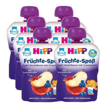HIPP Bio Früchte-Spaß Apfel-Heidelbeere in Granatapfel 6 x 90g