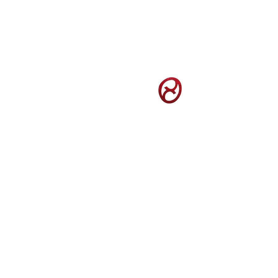 CYBEX PLATINUM Babyschale Aton Q Mars Red-red
