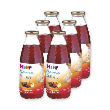 HiPP Stillsaft Mama Rote Früchte 6 x 500 ml