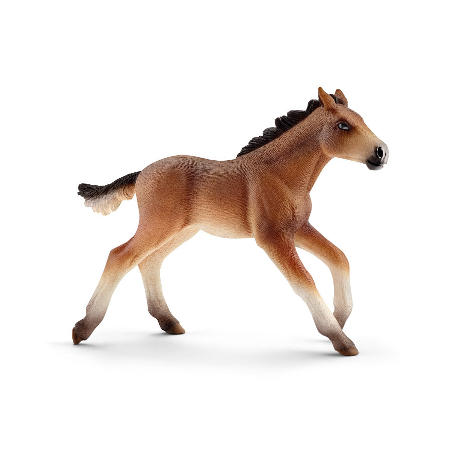 Schleich Figurine poulain Mustang 13807