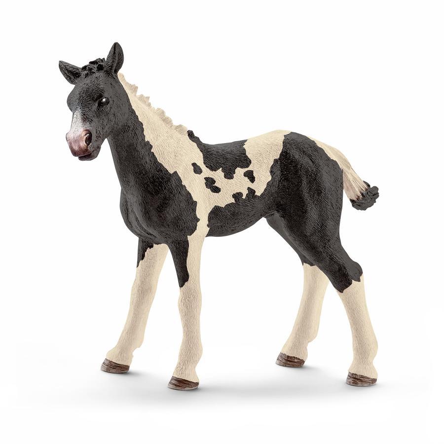 Schleich Figurine poulain Pinto 13803