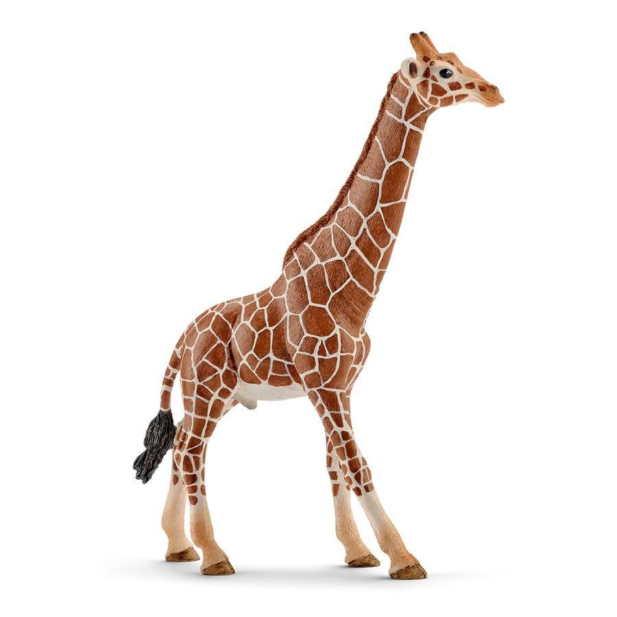 Schleich Giraffe n bulle 14749