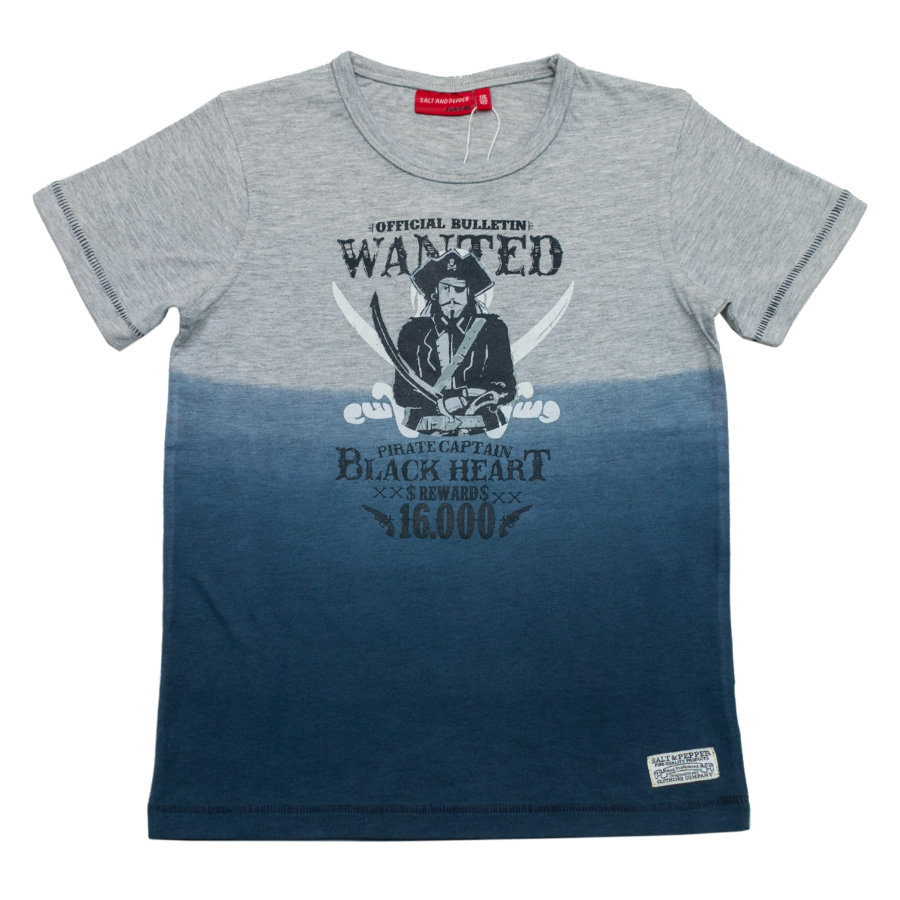 SALT AND PEPPER Boys T-Shirt grey melange