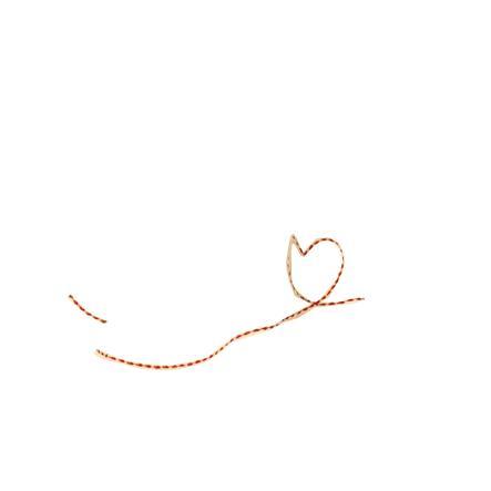 Käthe Kruse Kosekluthund Sammy