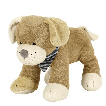 Sterntaler Sternchen Hund Hanno