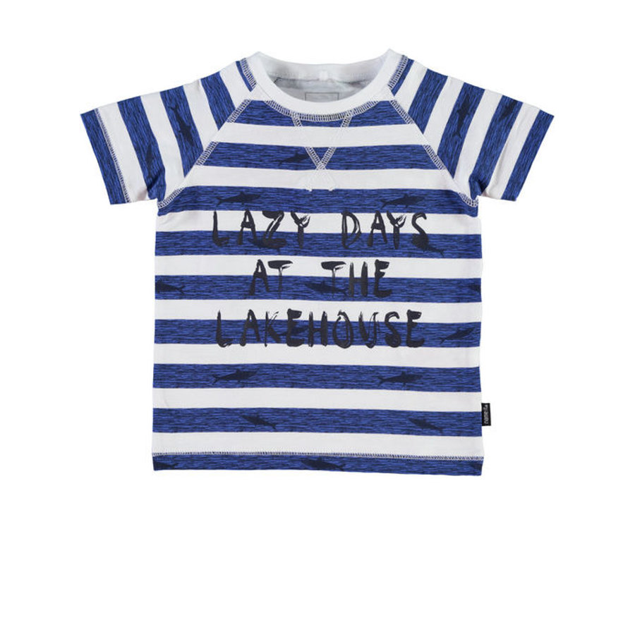 NAME IT Boys T-Shirt NITVAKIB blauw