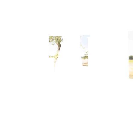 Geuther Pokój dziecięcy Cottage 3-drzwiowy