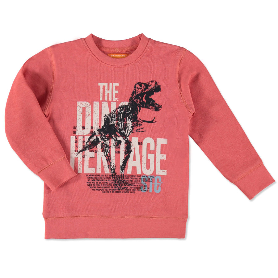 STACCATO Boys Mini Sweatshirt soft red melange