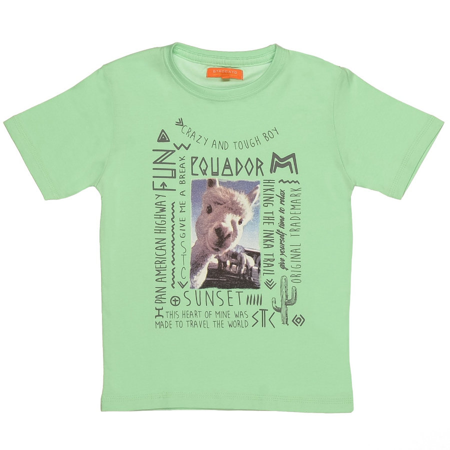 STACCATO Boys Mini T-Shirt springgreen