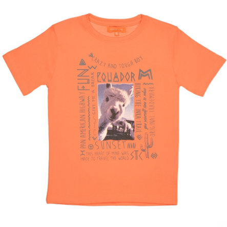 STACCATO Boys Mini T-Shirt hummer