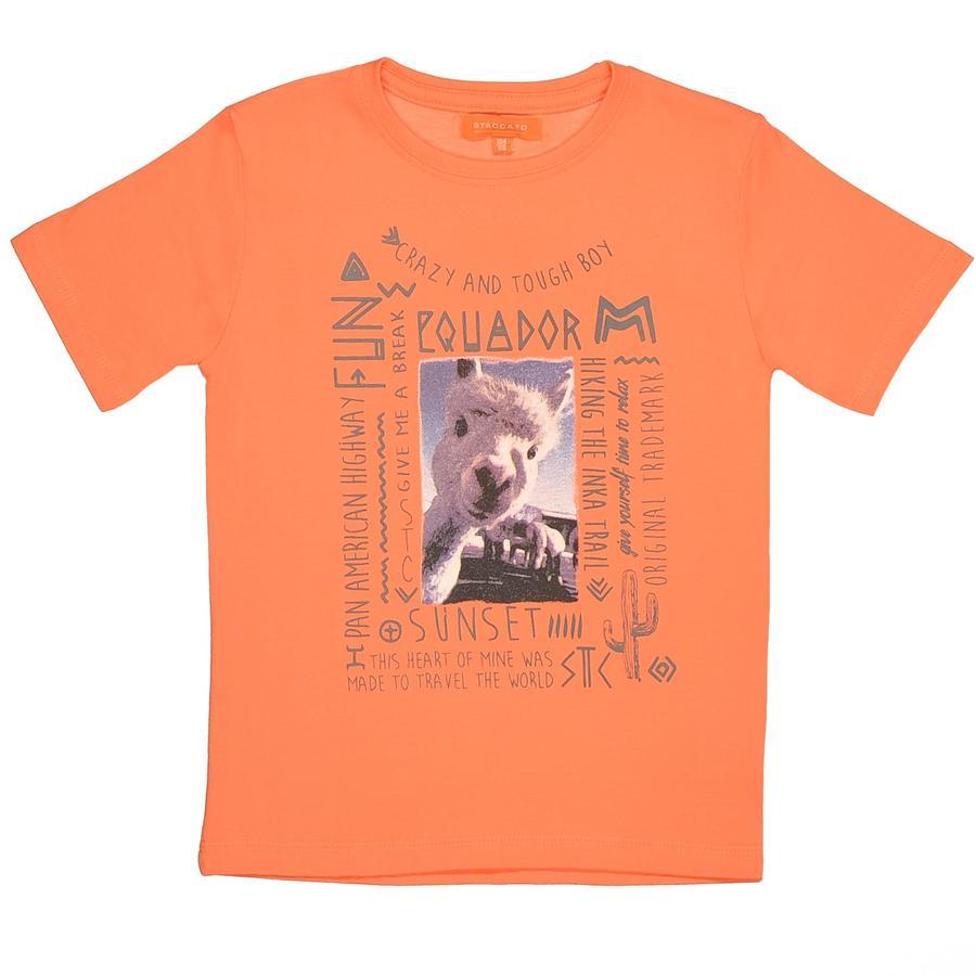 STACCATO Boys Mini T-Shirt hummer