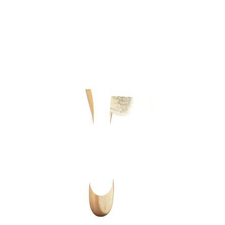 REER Natur hårborste liten (81165)
