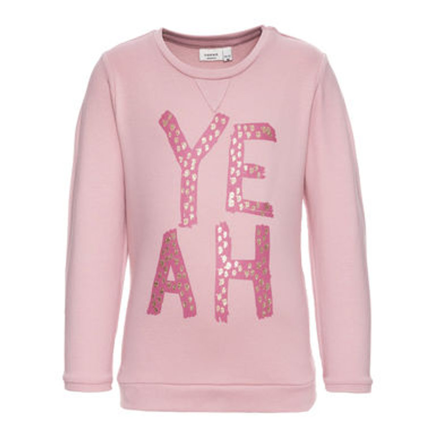 name it Girls Sweatpullover Larke zephyr