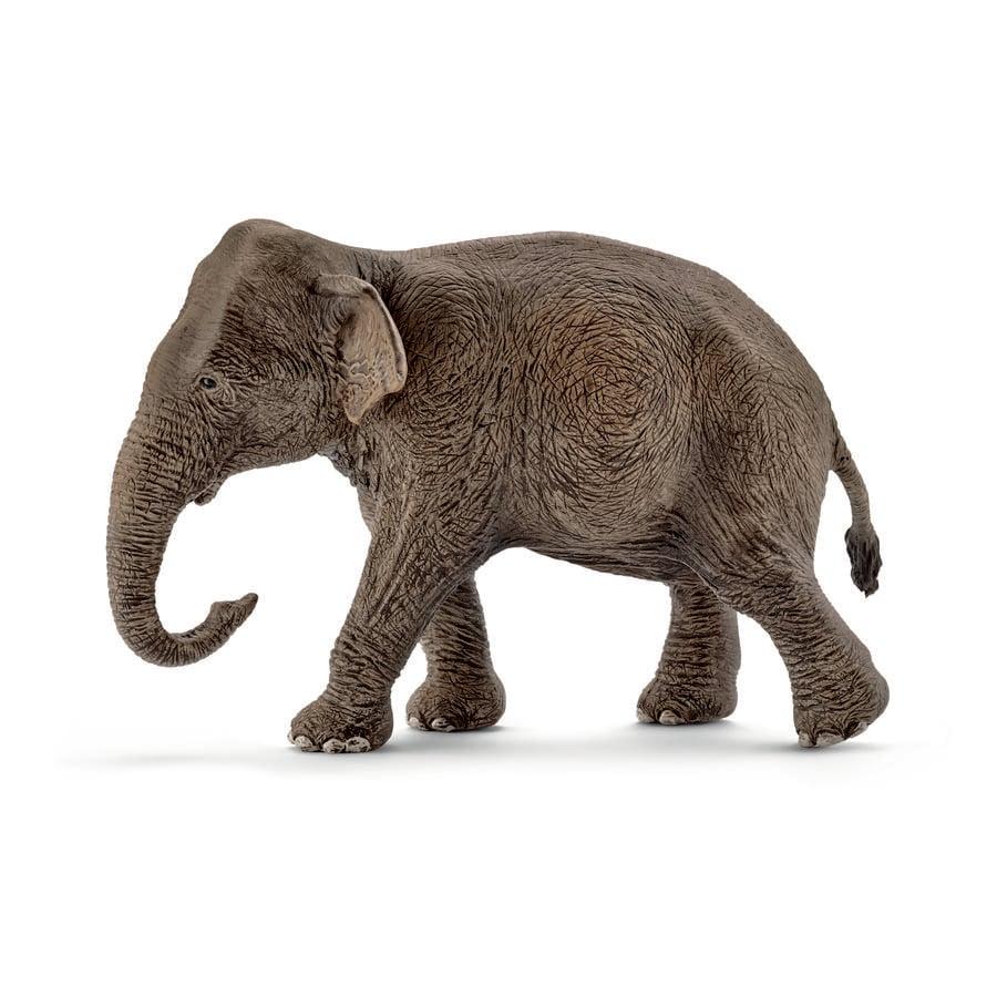 Schleich Asiatische Elefantenkuh 14753 -