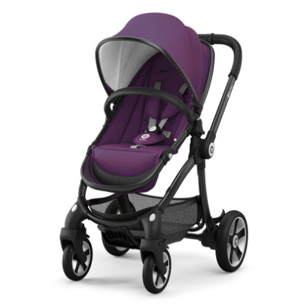 Kiddy Poussette 4 roues Evostar 1 Royal purple