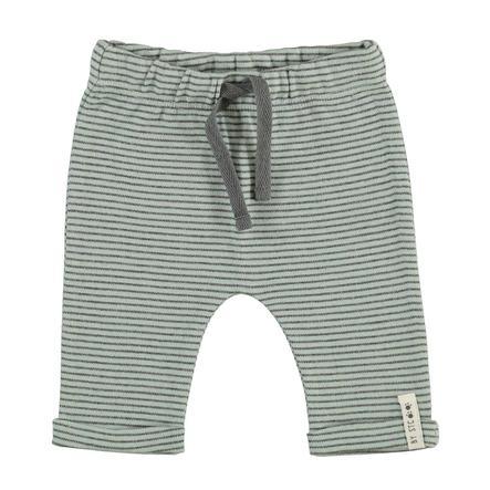 STACCATO Boys Pantalone felpa con strisce di giada