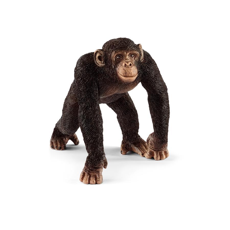 Schleich Figurine chimpanzé mâle 14817