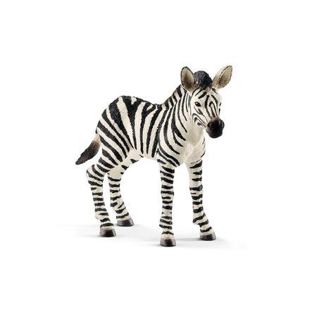 Schleich Zebra Fohlen 14811
