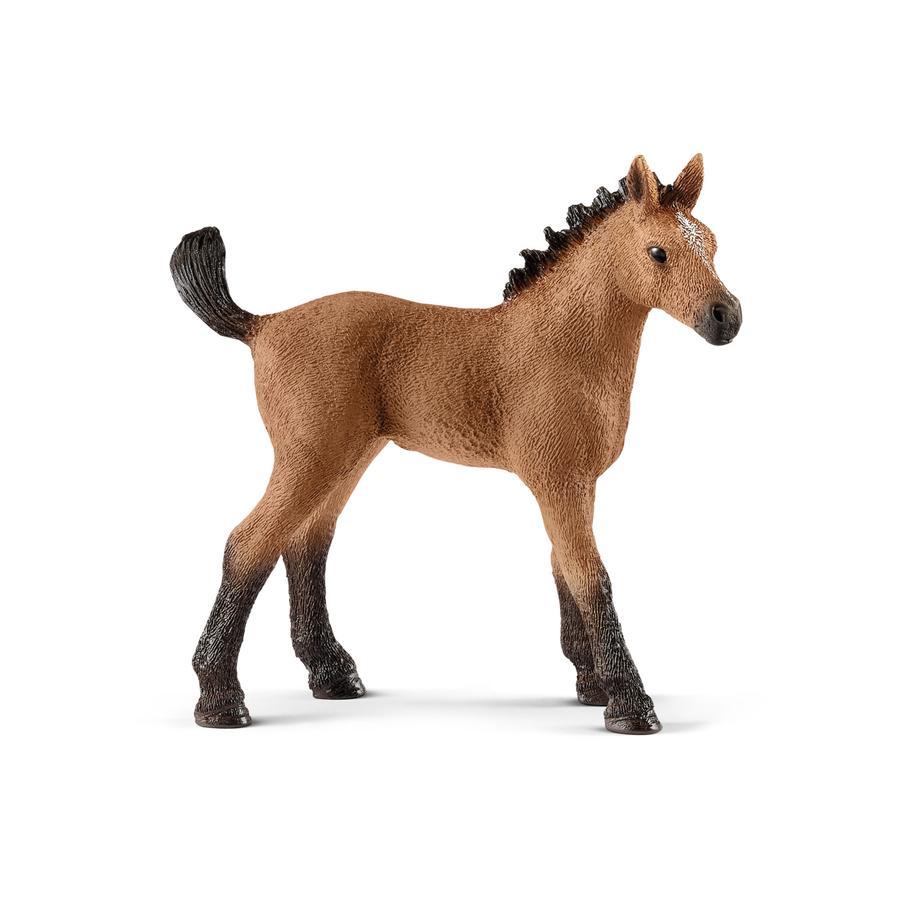 Schleich Quarter-hest føll 13854
