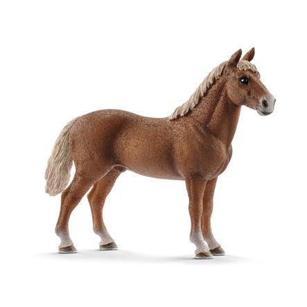 Schleich Morgan Horse Hengst 13869