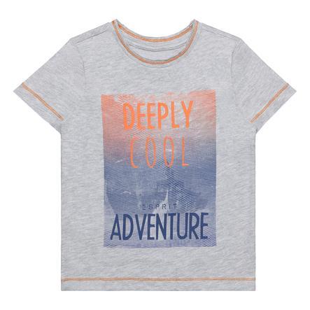 ESPRIT Boys T-Shirt Wrzosowaty szary