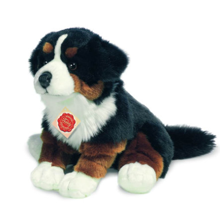 HERMANN® Teddy Peluche chien bouvier bernois assis, 29 cm