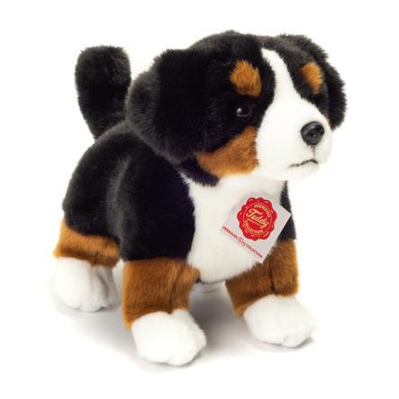 Fin HERMANN® Teddy Berner Sennenhund hvalp, stående 23 cm - pinkorblue.dk NC-07