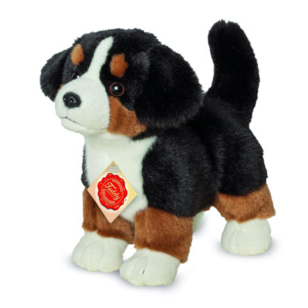 Teddy HERMANN Bernský salašnický pes štěně stojící, 23 cm