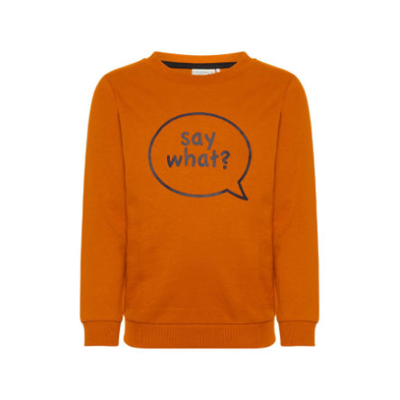 name it Boys Sweatshirt Nmmolsonas autumn mapel