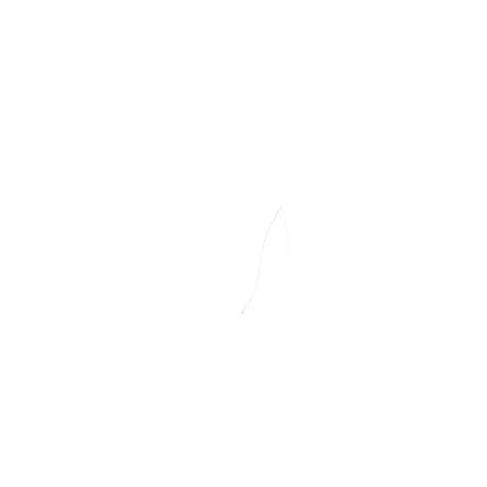 maximo Girl s stivali di gomma zebra rosa scuro rosa scuro
