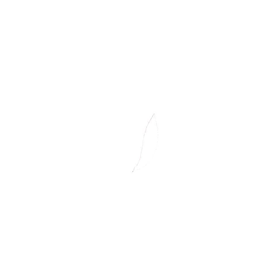 maximo Girls Gummistiefel Zebra dunkelpink
