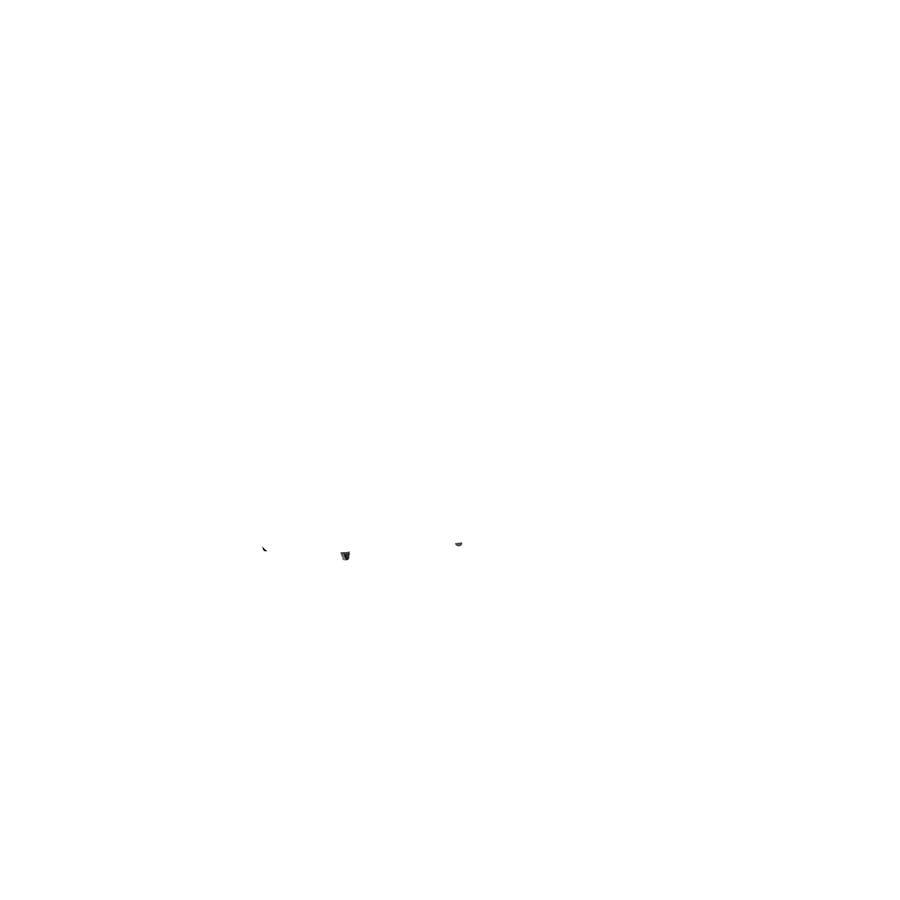 BERG Toys - Accessorio Go-Kart, Rimorchio S