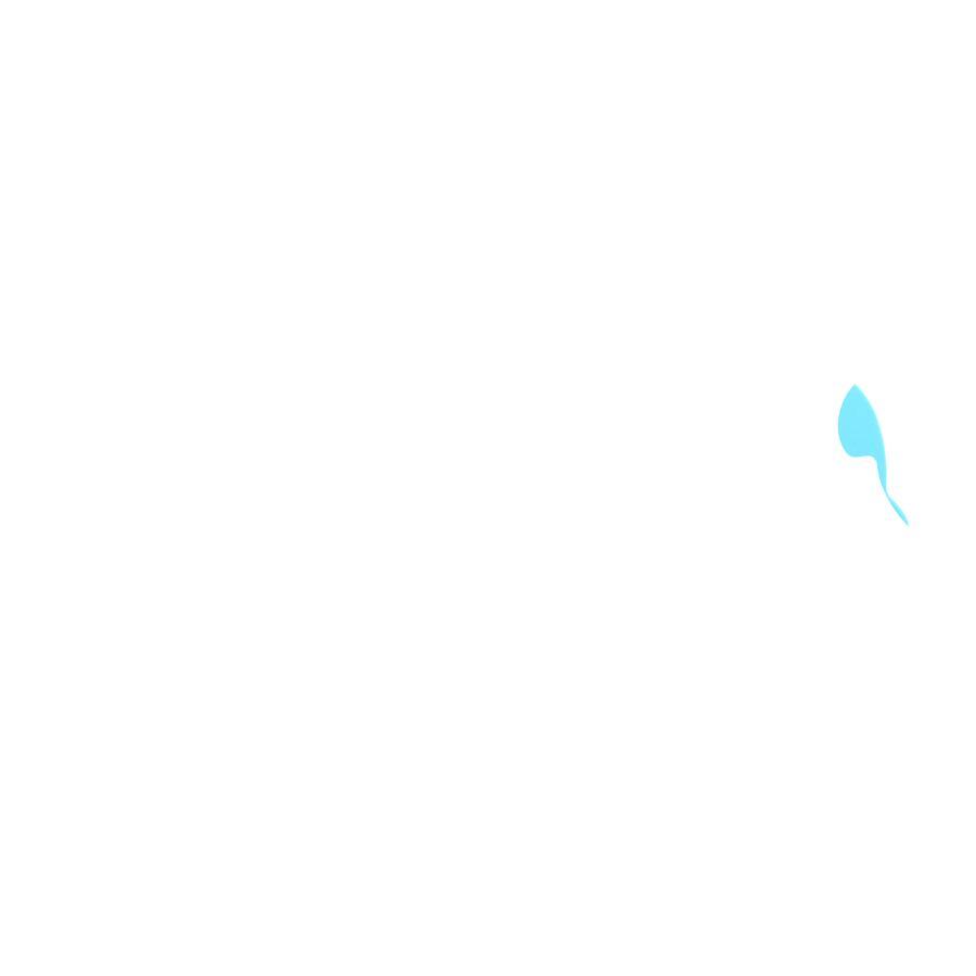 knorr® toys escabbo® Unterwasserwelt Badesticker 6-tlg.