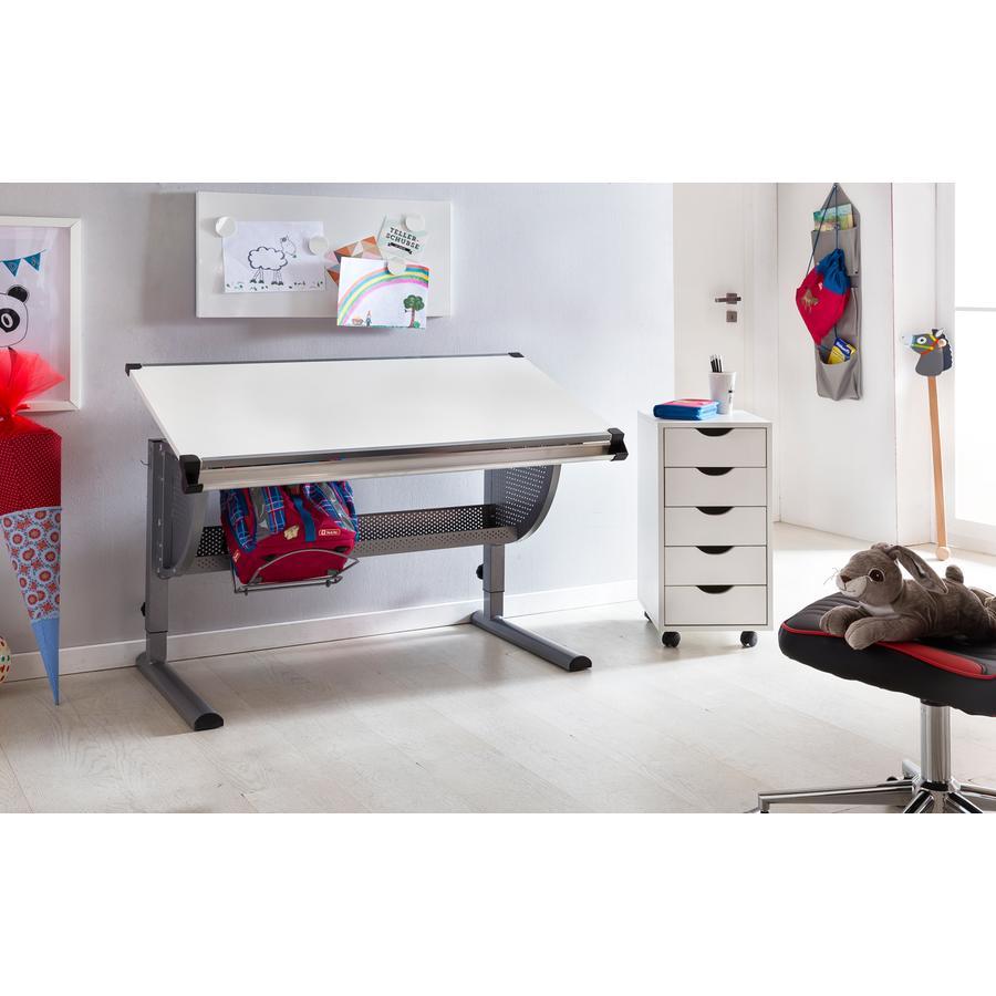 Wohnling ® Design Biurko dziecięce Maxi, 120 x 60 cm - szare/białe