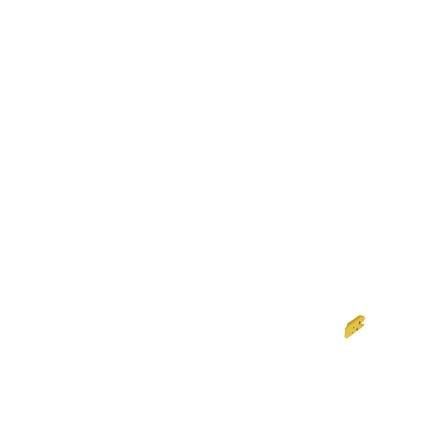 MAXI COSI Siège auto Titan Pro gr.1/2/3 Authentic Black