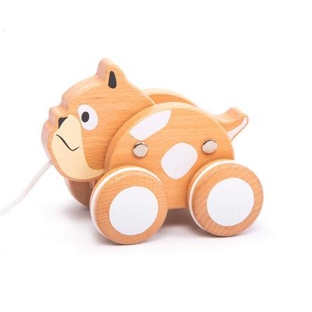 IGGY-vetokoira - Bulldog