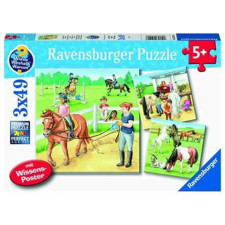 Ravensburger Puzzle WWW:  Ein Tag auf dem Reiterhof