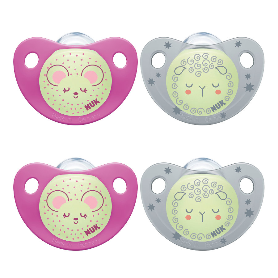 NUK Sucettes Night & Day Gr. 1 Silicone Girl 2 x Set of 2, Purple & Grey
