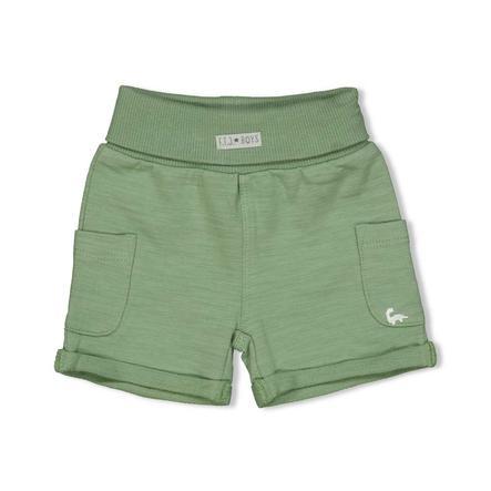 Feetje Shorts Dinomite grün