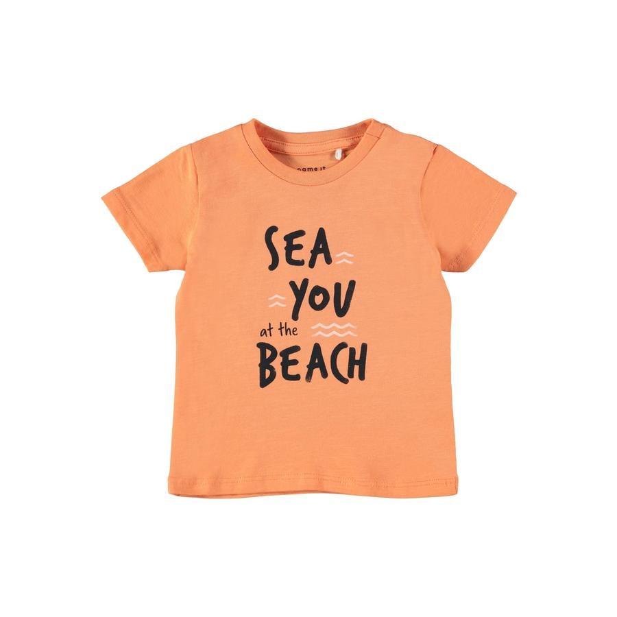 name it T-Shirt Nbmhektor Melon