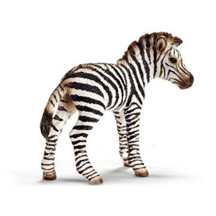 SCHLEICH - Zebra föl   14393