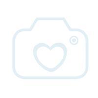 CONVERSE Chaussure basse CTAS High menta vert |